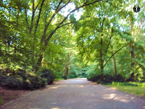 Trilha nos jardins do Tiergarten. Thumb